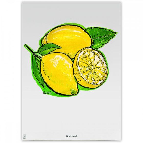 Neuland BigOne®, vágott hegyű 6-12 mm, 5 db/szett - No. 11 Lemon tree - 80422591