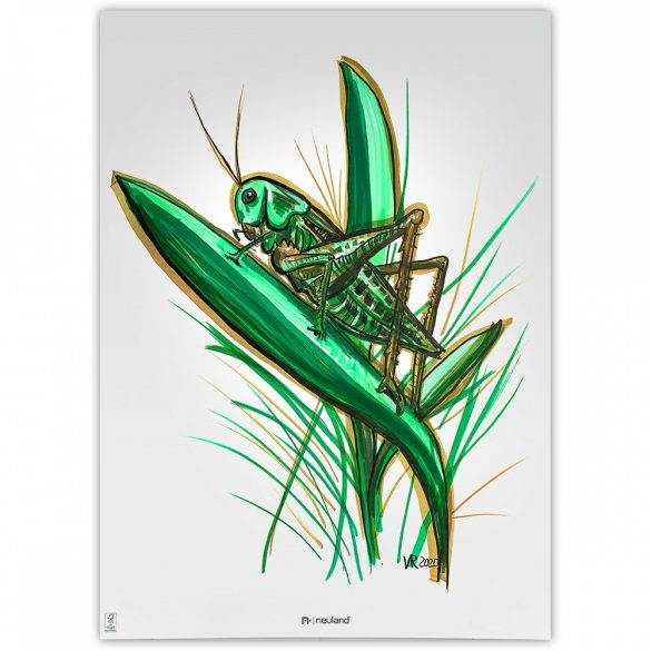 Neuland No.One® Art, ecsethegyű 0,5-7 mm, 5 db/készlet - Back to Green, 80592491