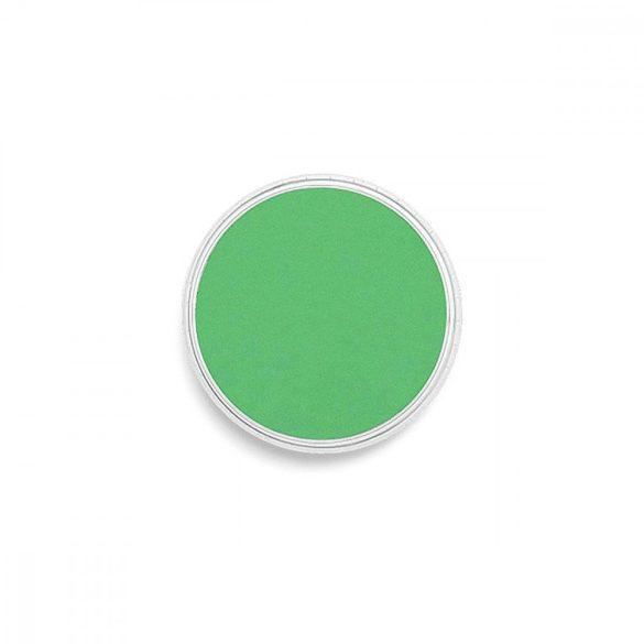 PanPastel®  640.5 pasztell zöld